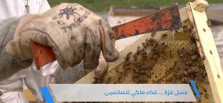 عسل غزة ... غذاء ملكي للصائمين ،جولة رمضانية،الحلقة 7،قناة مساواة