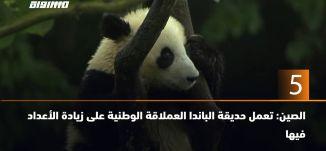 60 ثانية - الصين: تعمل حديقة الباندا العملاقة الوطنية على زيادة الأعداد فيها  ،29.7.2019