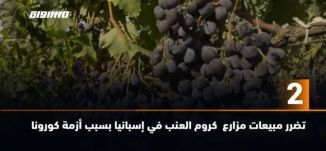 َ60 ثانية- تضرر مبيعات مزارع  كروم العنب في إسبانيا بسبب أزمة كورونا ،02.09.2020