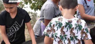 موسم قطف الزيتون احتفال تقليدي عائلي للمجتمع الفلسطيني تتوارثه الاجيال،تقرير،مراسلون.23.11.20،مساواة