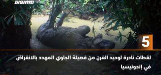 َ60 ثانية -لقطات نادرة لوحيد القرن من فصيلة الجاوي المهدد بالانقراض في إندونيسيا ،03.07.2020