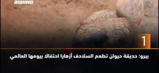 ب 60 ثانية-بيرو: حديقة حيوان تطعم السلاحف أزهارا احتفالا بيومها العالمي،26.5.2019