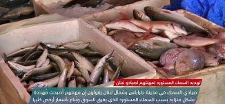 صيادو لبنان ..  تهديد السمك المستورد لمهنتهم -view finder -15-9-2017 - قناة مساواة الفضائية