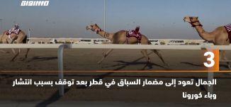 َ60ثانية-الجمال تعود إلى مضمار السباق في قطر بعد توقف بسبب انتشار وباء كورونا،24.10.2020،مساواة