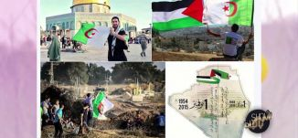 Musawachannel   هاشتاغ   استقلال الجزائر  2 11 2015   شو بالبلد   قناة مساواة الفضائية