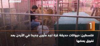 ب 60 ثانية - فلسطين: حيوانات حديقة غزة تجد مأوى جديدا في الأردن بعد نفوق بعضها،8-4-2019