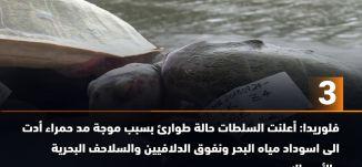 ب 60 ثانية - غزة: حول رجل مئات العبوات البلاستيكية من نفايات الى زورق -اخبار مساواة،19-8
