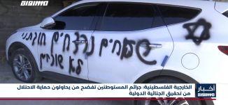 الخارجية الفلسطينية: جرائم المستوطنين تفضح من يحاولون حماية الاحتلال من تحقيق الجنائية الدولية