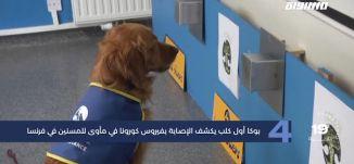 مساواة 60 ثانية : بوكا أول كلب يكشف الإصابة بفيروس كورونا في مأوى للمسنين في فرنسا