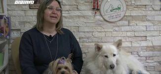 العلاج بمساعدة الحيوانات للتغلب على مشاكل التركيز وتنمية الشخصية،مراسلون،21.4.2019- قناة مساواة
