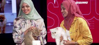 حيوانات خمس نجوم: فندق خاص يستقبل الحيوانات الأليفة في باقة.،أسماء وساجدة أبو مخ،المحتوى19، 28.10