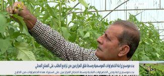 بانوراما مساواة:بدء موسم زراعة الخضراوات الموسمية وسط قلق المزارعين من تراجع الطلب على المنتج المحلي