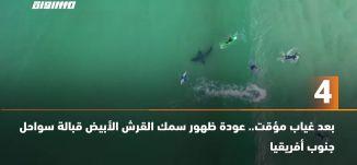 َ60 ثانية -بعد غياب مؤقت.. عودة ظهور سمك القرش الأبيض قبالة سواحل جنوب أفريقيا -25.06.20.مساواة