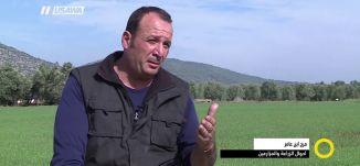 مرج بن عامر .. احوال الزراعة والمزارعين - وجدي عودة ، صباحنا غير، 8.1.2018, - قناة مساواة