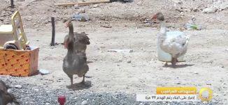 تقرير - استهداف العراقيب - اصرار على البناء رغم الهدم 99 مرة - #صباحنا_غير- 19-5-2016- مساواة