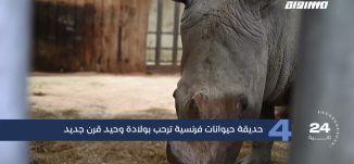 مساواة 60 ثانية : حديقة حيوانات فرنسية ترحب بولادة وحيد قرن جديد