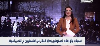 بانوراما سوشيال: تسجيلات توثق انفلات المستوطنين بحماية الاحتلال على الفلسطينيين في القدس العتيقة