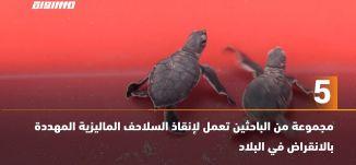 َ60 ثانية -مجموعة من الباحثين تعمل لإنقاذ السلاحف الماليزية المهددة بالانقراض في البلاد،21.07.2020