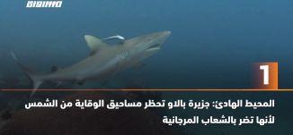 """60 ثانية -""""المحيط الهادئ: جزيرة بالاو تحظر مساحيق الوقاية من الشمس لأنها تضر بالشعاب المرجانية،03.01"""